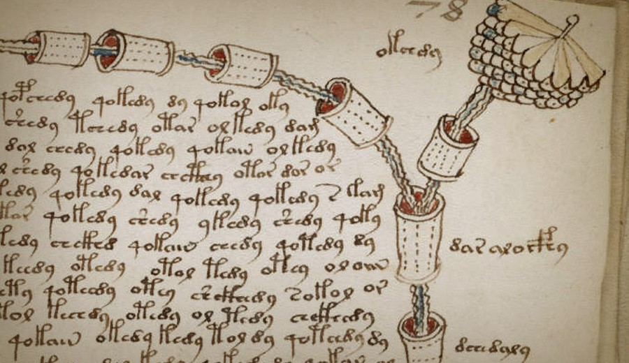 manuscrit Voynich 5
