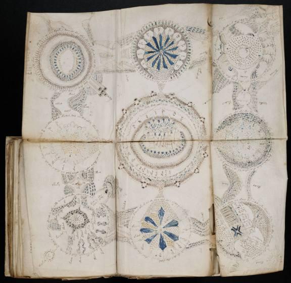 manuscrit Voynich 7