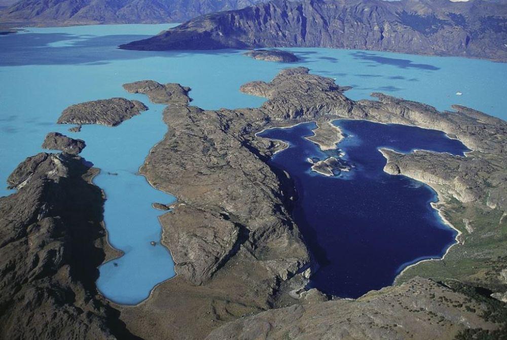 yab-lac-argentino-province-de-santa-cruz-argentine