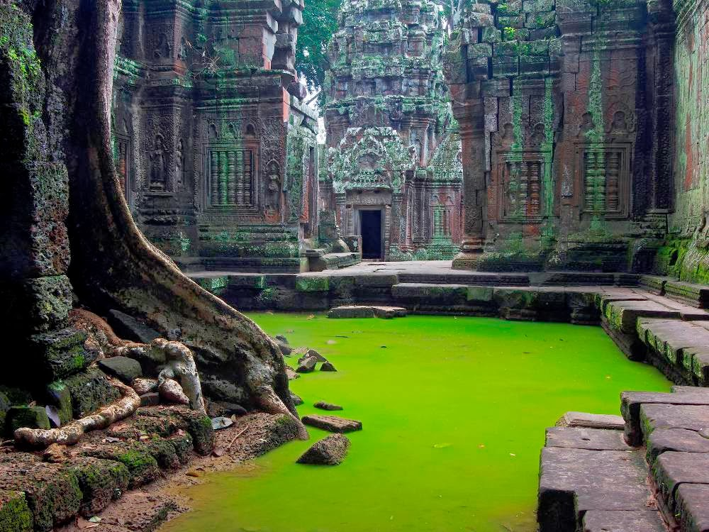 temple-ta-prohm-cambodge