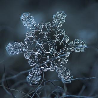 flocon de neige3