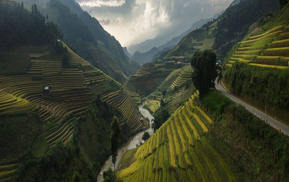 route du Paradis Mu Cang Vietnam.JPG