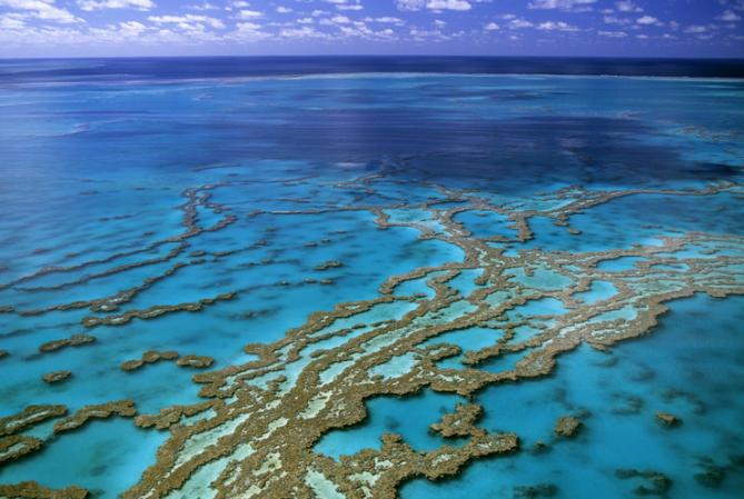grande barrière de corail 2