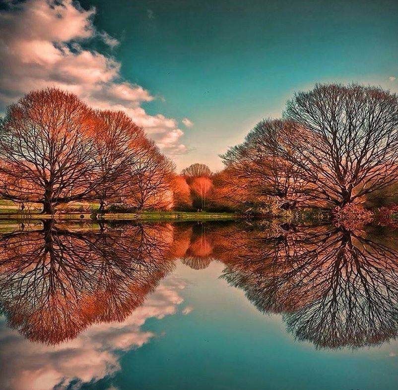 Hyde Parke