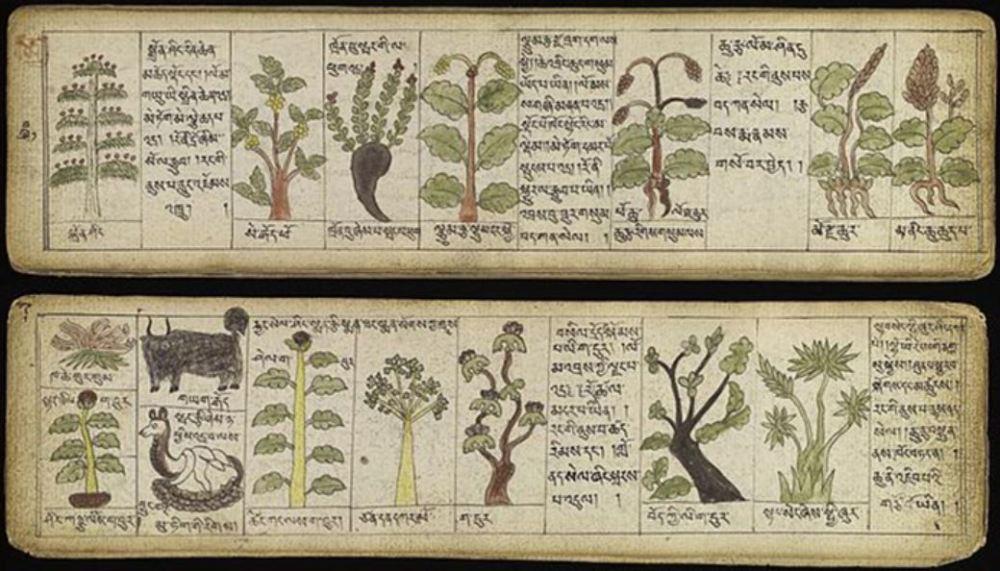 médecine tibétaine Tantras