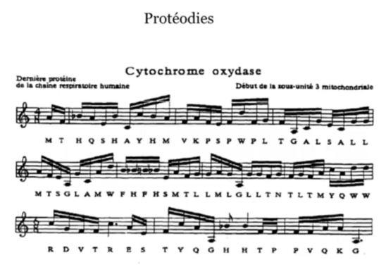 Protéodie