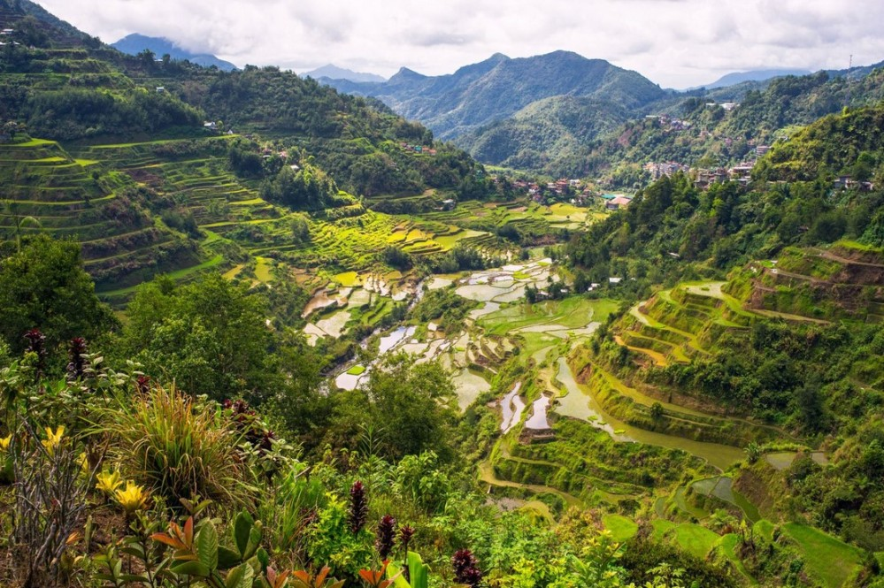 Rizières Banau Philippines