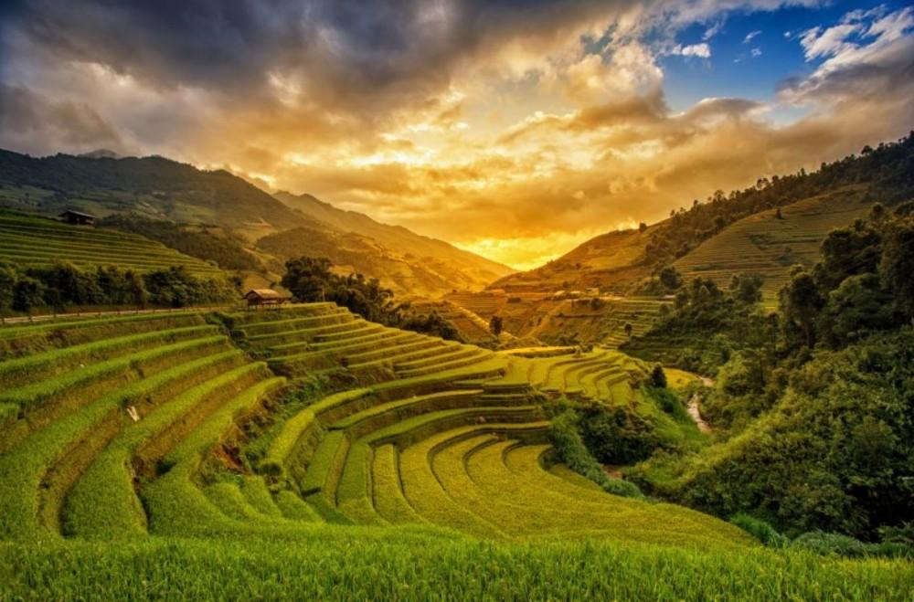 rizières Birmanie