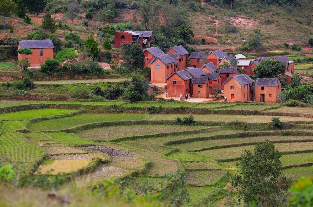rizieres Madagascar