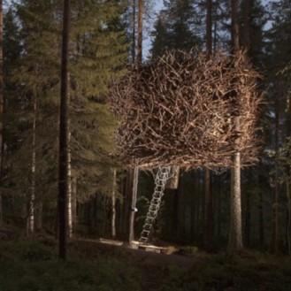 Treehotel4