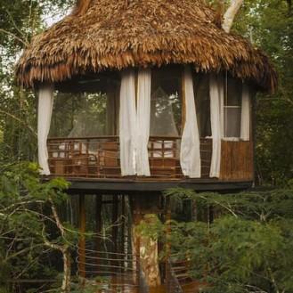 Treehouse lodge Perou