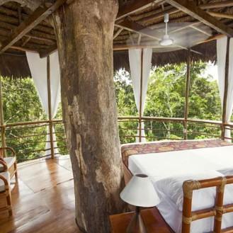 Treehouse lodge Perou23