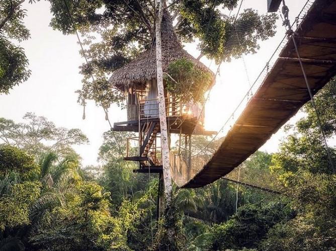 Treehouse lodge Perou3