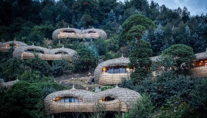 Treehouse Rwanda Bisate